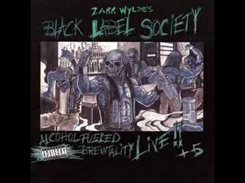 Black Label Society - Blood In The Well
