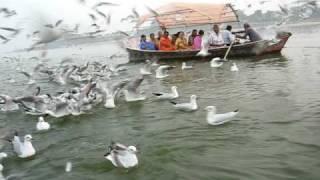 Prayag,  Triveni Sangam 2