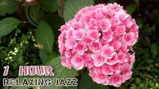 Relaxing Jazz (non copyright) house jazz music ジャズ