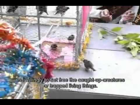 A Boundless In Myanmar.mp4 video