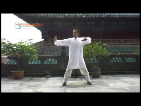 Wudang Five Animal Qigong  氣功 Qigong for Health