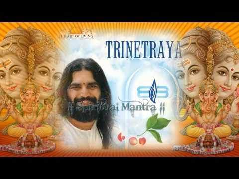 Om Namah Shivaya Shivaya Namah Om - Rishi Nitya Pragya - Art...