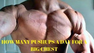 how many push ups per day for a big chest