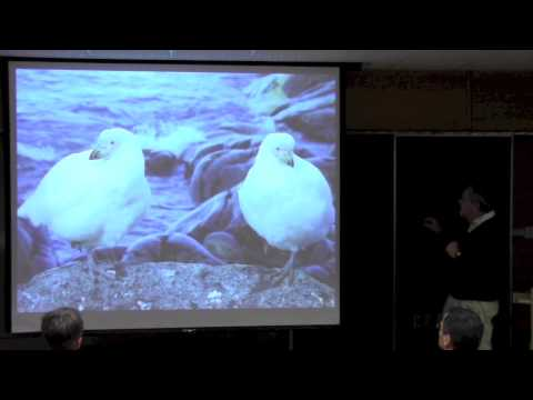 Centennial Lecture Series: Dave Denlinger - Antartica And Its Insect