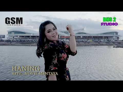 Download DJ HANING 2019 versi INDONESIA ORIGINAL Art. Novie Mentaya Mp4 baru