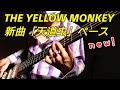 天道虫-ベースを弾きました。THE YELLOW MONKEYイエローモンキーの新曲をどんどんコピーしたいなー!※ギター、ドラム、キーボード