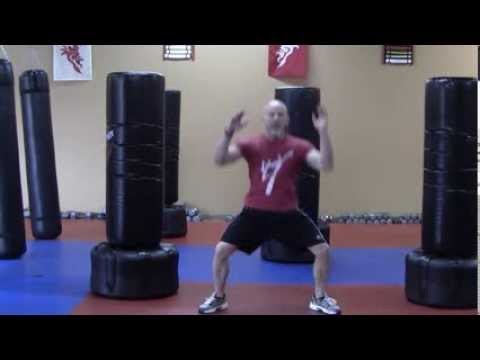 Morristown Kickboxing - Daily Workout Challenge - Elbow To Knee Hop Squats Image 1