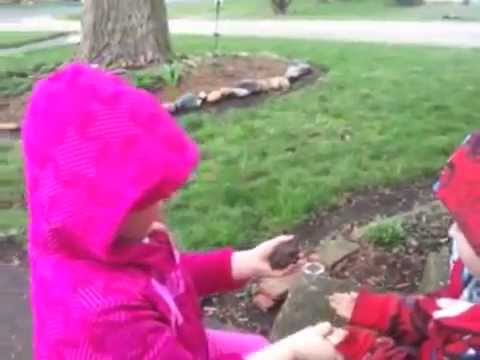Cute kids play with a toad.