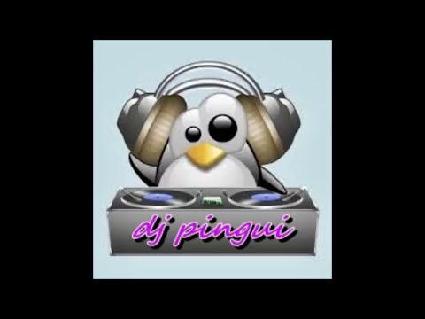 dj pingui mix reggeaton