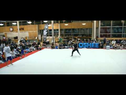 Stockholm Tricking Destruction 2013