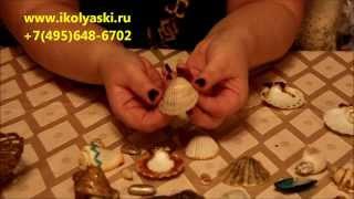 мастер-класс по новогоднему декору ракушек и созданию новогодних украшений