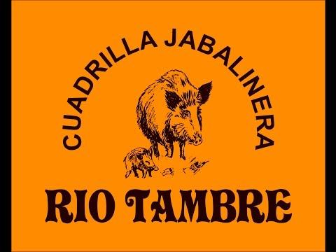 CUADRILLA RIO TAMBRE Jabalí de 148kg (25/10/2014)