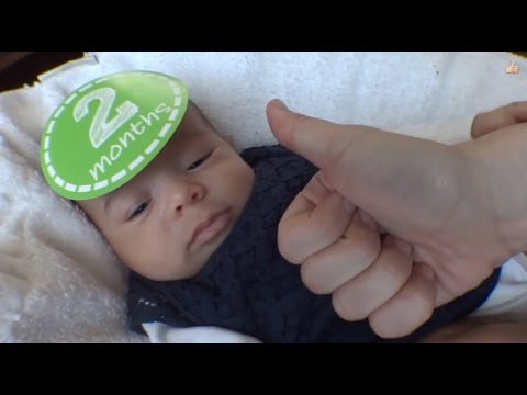 Pirillo Vlog 933 - JEDI IS TWO MONTHS OLD TODAY!