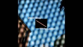 Watch David Gray White Ladder video