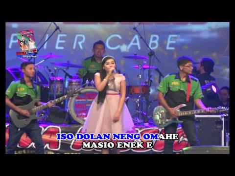 download lagu Elsa Safira  Anak Konco Dewe gratis