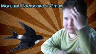 Мальчик читает стих про ласточек