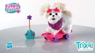 Trixie the Skateboarding Pup Pet - FurReal Friends - Hasbro
