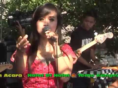 Hentikan Tangismu - Sifa Adelia NEW DUTA Tuban 2017 Cah TeamLo Punya