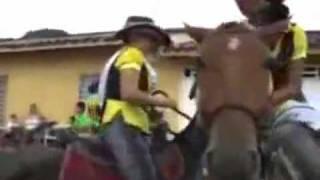 Cavalo Montador!