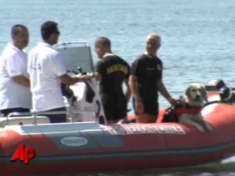 trained Dogs Rescue Tourists at Italian Beaches