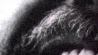 Watch Robert Wyatt Alliance video