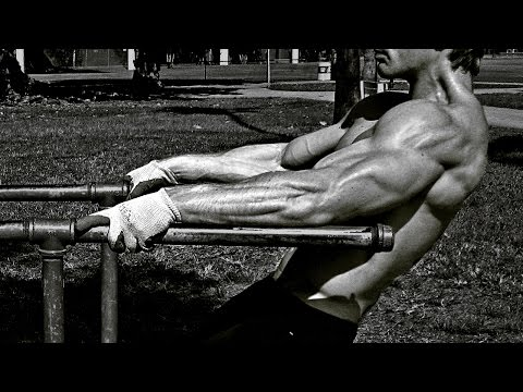 Calisthenics and Weight Training - Best Moments & Workouts 2014 (MOTIV...