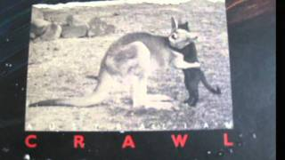 Watch Australian Crawl My Day At The Beach video