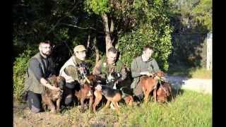 15° Campionato Italiano cani da seguita su cinghiale in muta cat. B