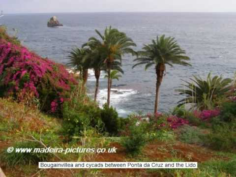Madeira - Coastal Views