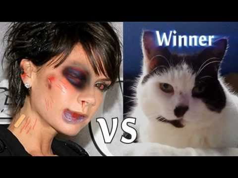 Victoria Beckham vs Hitler Cat