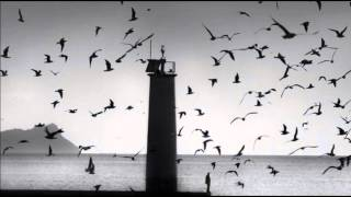 The Cinematic Orchestra Arrival Of The Birds Transformation