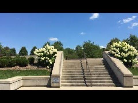 Jeff Dechesare August 2017 Instagram Clips