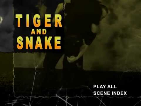 Combat Sanshou Tiger and Snake Preview Image 1