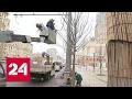 В Москве началась весенняя стрижка деревьев