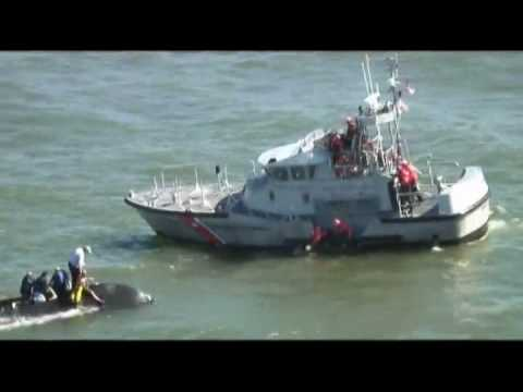 Coast Guard rescues 6 people from a capsized boat