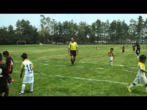 Pachuca juniors Vs Pumas