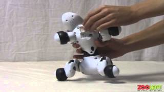 Zoomer Robot Dog Hands On Review
