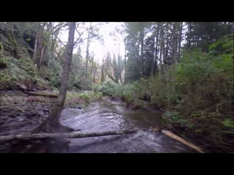 Hard Day of Steelhead Fishing  on Vancouver island
