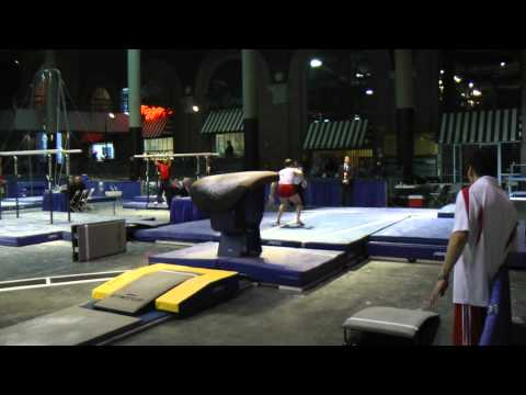 Paul Hamm - Vault - 2012 Winter Cup Prelims