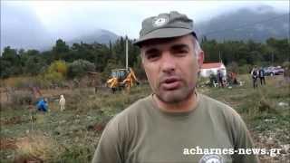 Αναδάσωση Αγίου Γεωργίου Βουρδουμπά, Θρακομακεδόνες