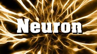 Neurobiologie: Das Neuron (Nervenzelle)