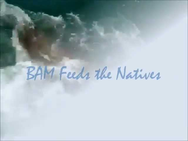 BAM Feeds the Natives.wmv