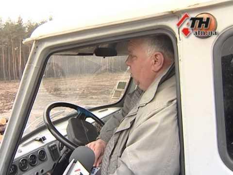 Под Харьковом вырублено несколько гектаров леса