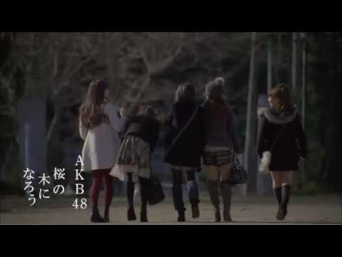 【PV】 桜の木になろう / AKB48 [公式]