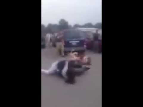 WSHS fight 2012