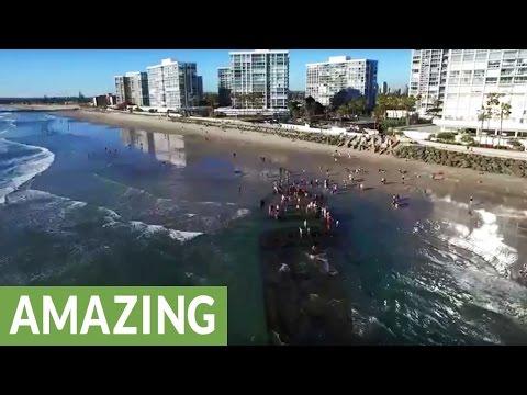 砂の中に埋もれていた船がエルニーニョによる嵐で露わに!