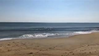 Facebook Live: The ocean is now swimable on this beautiful beach day!