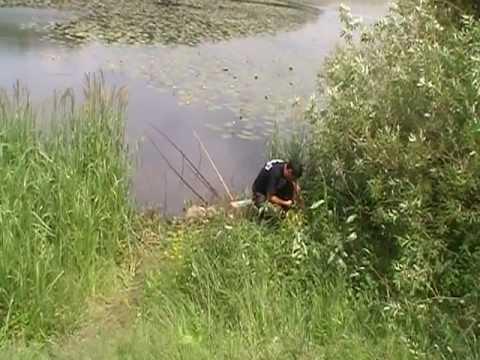 ловля риби на річках