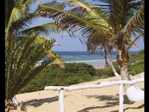 Coconut Bay, Mozambique. Travel guide.