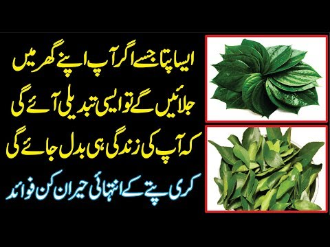 Kari Patta Ke Fayde | Bay Leaf Burning Benefits | How to Use Bay Leaf | Bay Leaf for Depression